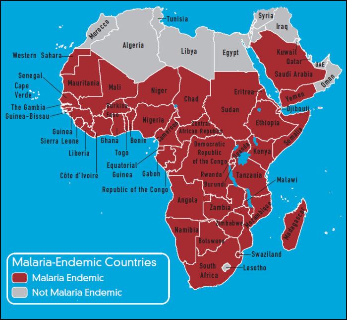 malariainafrica2