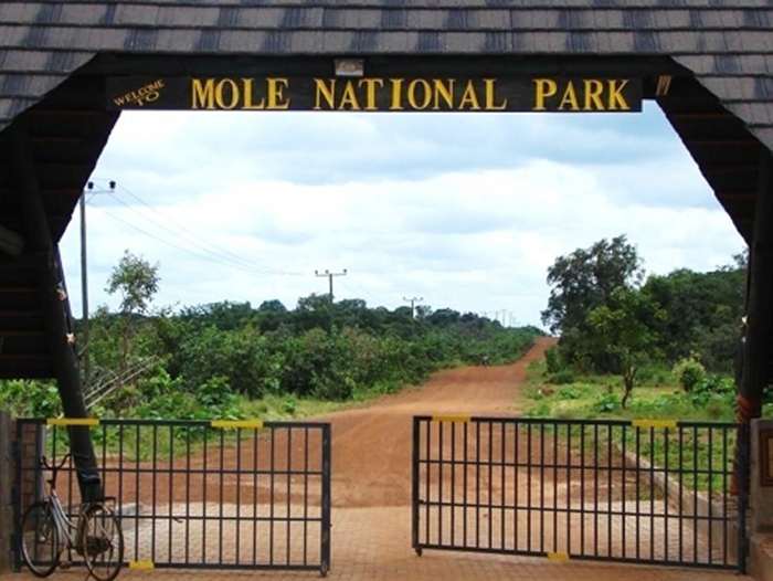 Mole National Park entrance gates
